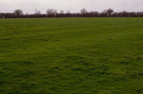 Stony_Stratford_Ridge_&_Furrow_Field