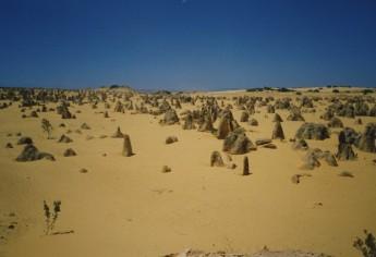 Pinnacles Desert, Petrified Forest